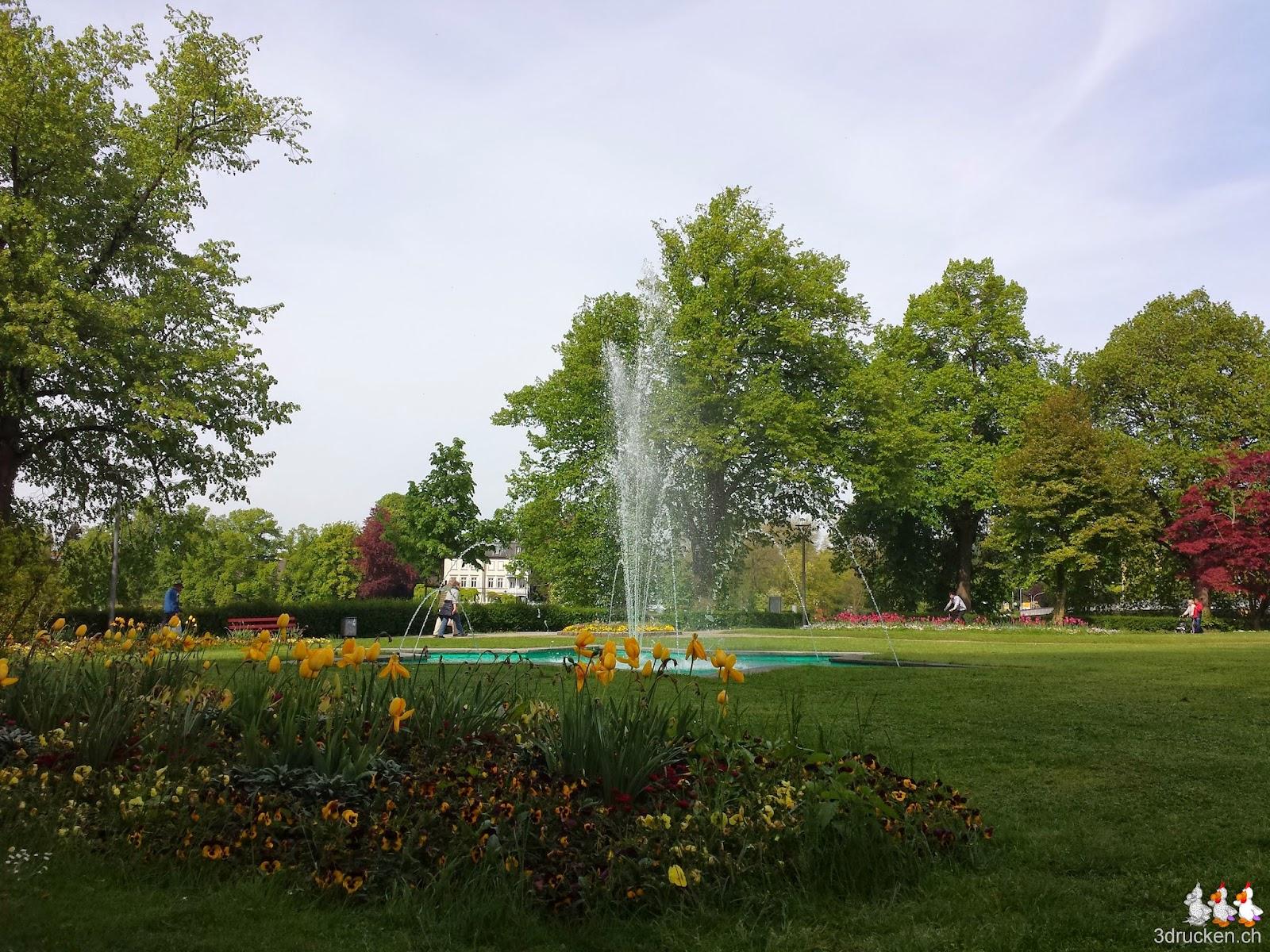 Foto eines Springbrunnens in einer der Grünanlagen von Lindau