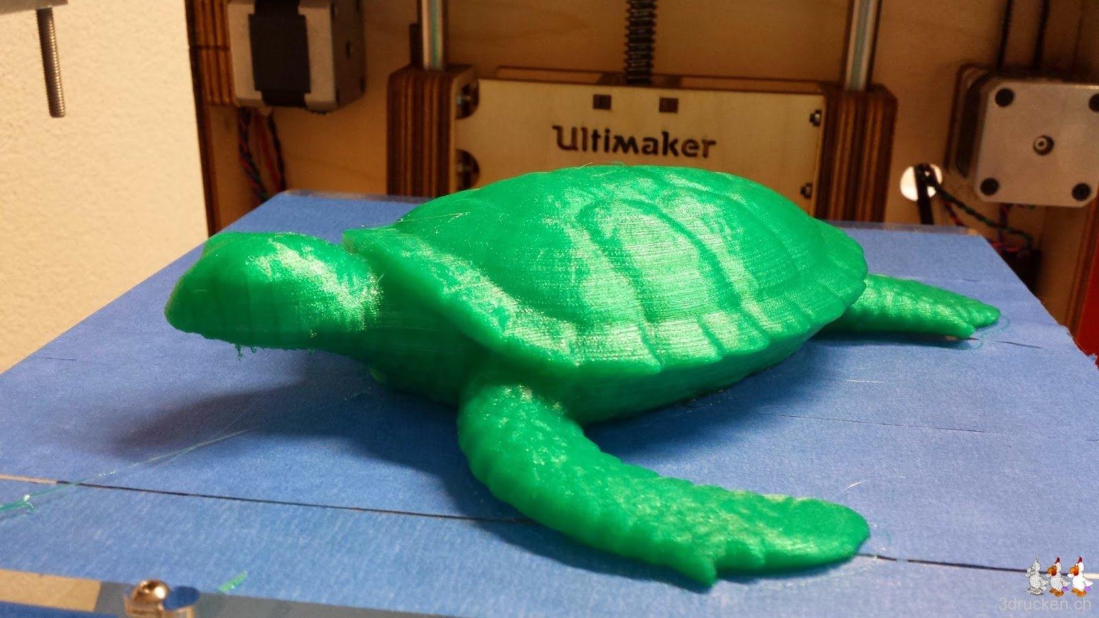 Foto von der erfolgreich gedruckten Schildkröte auf dem Ultimaker Original von vorne aufgenommen